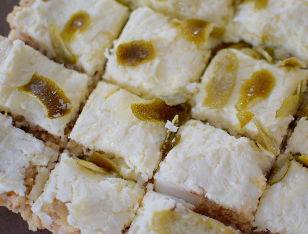 Coconut Ginger Lime Macadamia Bars - Craving4More